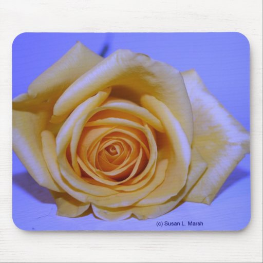 Single yellowish rose blue tinted mouse pad