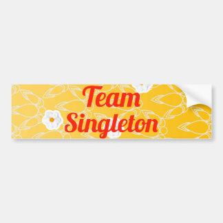 Singleton del equipo pegatina de parachoque