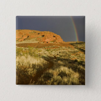 Singletrack at Red Cliffs Desert Preserve near Button