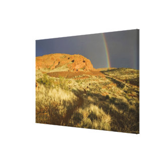 Singletrack at Red Cliffs Desert Preserve near Canvas Print