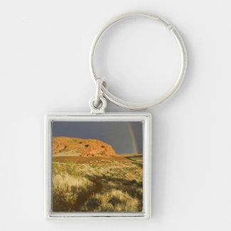Singletrack at Red Cliffs Desert Preserve near Key Chain