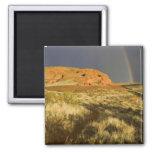 Singletrack at Red Cliffs Desert Preserve near Magnet