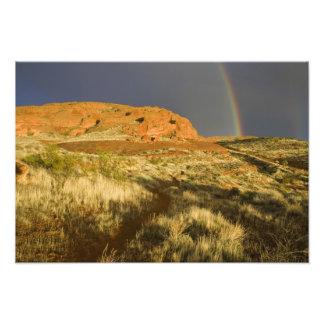 Singletrack at Red Cliffs Desert Preserve near Photograph