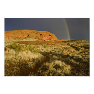Singletrack at Red Cliffs Desert Preserve near Poster