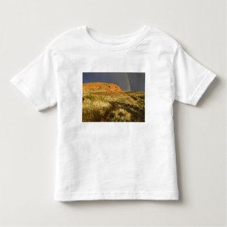 Singletrack at Red Cliffs Desert Preserve near T-shirt