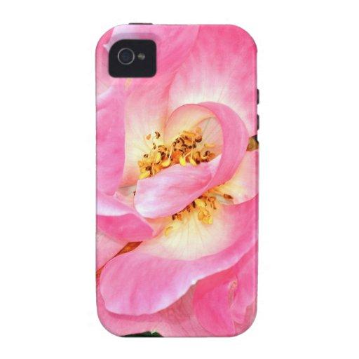 Singular Beauty Lush Pink Rose Vibe iPhone 4 Covers