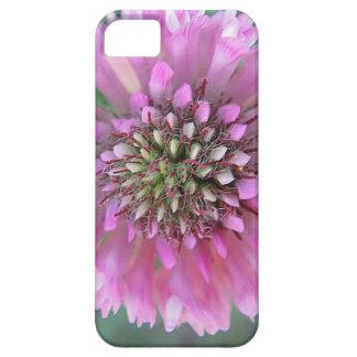 Singular pink bloom iPhone 5 case