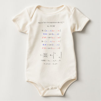 Singular value decomposition into subspaces baby bodysuit