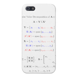 Singular value decomposition into subspaces cases for iPhone 5