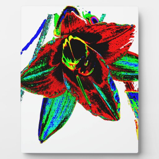 Singularidad floral placas