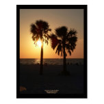 Sinking Sun at Clearwater Beach, Florida Post Card