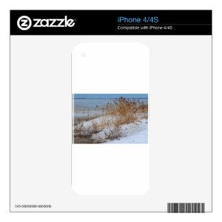 Sino divergente skins para eliPhone 4S