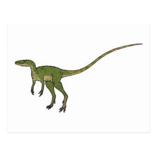 Sinosauropteryx Postcard