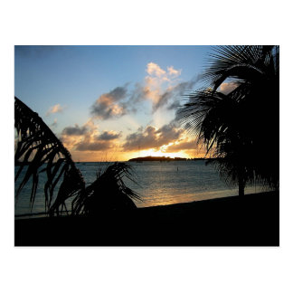 Sint Maarten Postcard