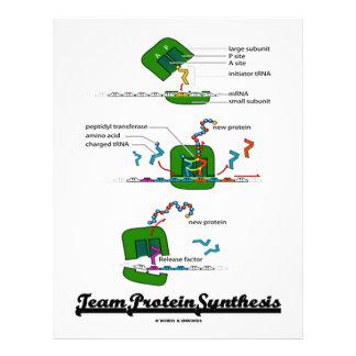 Síntesis de la proteína del equipo biología membrete