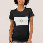Sionista, Israel Camisetas
