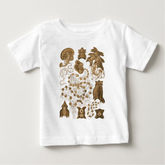 Siphonophorae Baby T-Shirt