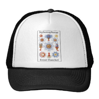 Siphonophorae by Ernst Haeckel Mesh Hats