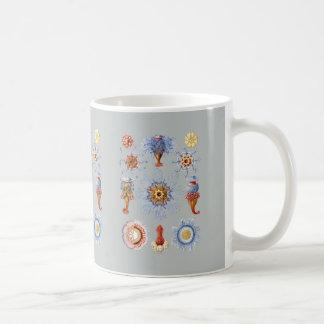 Siphonophorae Coffee Mug