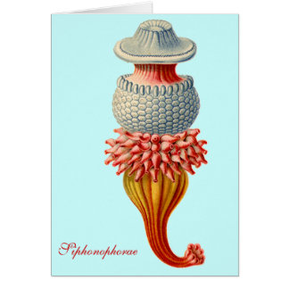 Siphonophorae  - Jellyfish Detail Greeting card