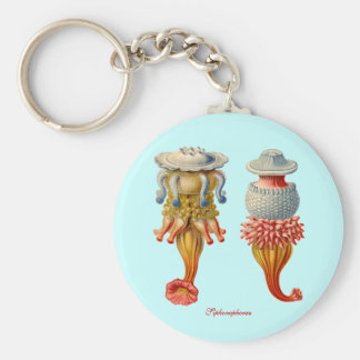 Siphonophorae  - Jellyfish key fob