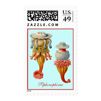 Siphonophorae  - Jellyfish Postage Stamps
