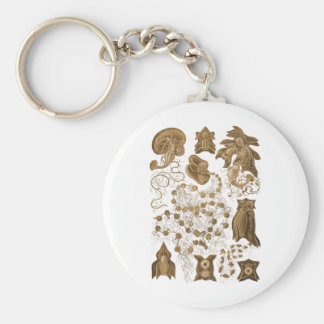 Siphonophorae Key Chains