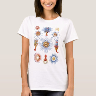 Siphonophorae T-Shirt