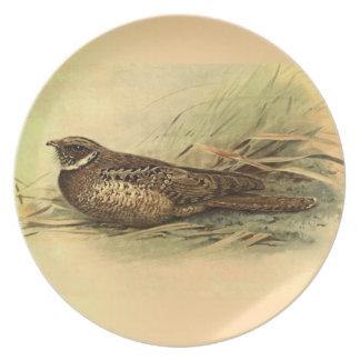 Siphonorhis Americana Melamine Plate