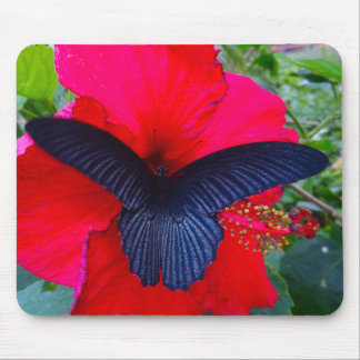 Sipping Sweetly - Butterfly Mousepad