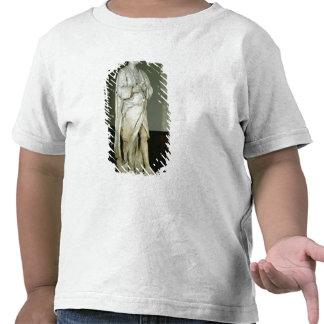 Sir Isaac Newton T Shirt