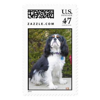 Sir Winston Churchill II Postage Stamp