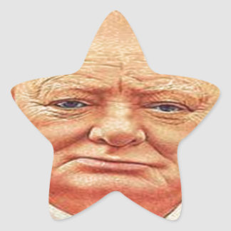 Sir Winston Churchill Pegatina Forma De Estrella