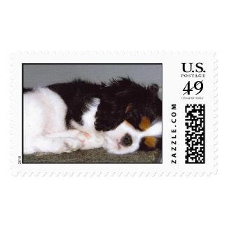 Sir Winston Churchill Stamp