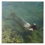 Sirena que nada bajo el agua azulejos cerámicos