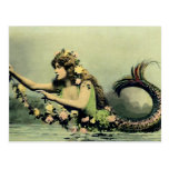 Sirena y rosas postal