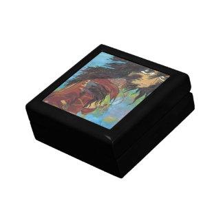 Siris en la transformación - arte de la cubierta d caja de regalo