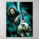 Sirius Black and Bellatrix Lestrange print