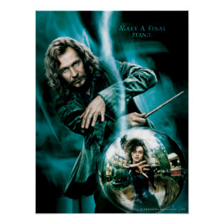 Sirius Black and Bellatrix Lestrange Poster