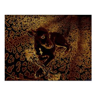 Sirius Postcard