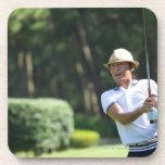 Sirva jugar al golf, prefectura de Miyazaki, Posavaso