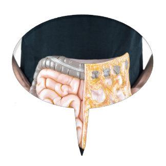 Sirva llevar a cabo el modelo de intestinos o de figuras de tarta