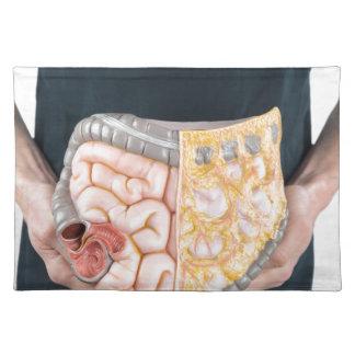 Sirva llevar a cabo el modelo de intestinos o de manteles