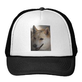 Sirve al mejor amigo gorras de camionero