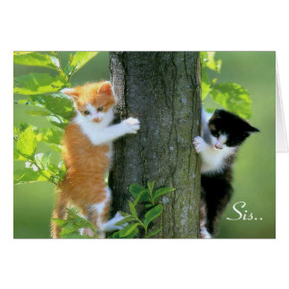 Sis, Thanks For Being There.. Greeting Cards