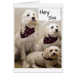"""SIS WISHED """"HAPPY BIRTHDAY"""" BY 3 PUPS CARD"""