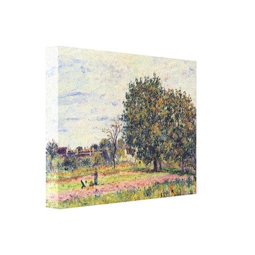Sisley - árboles de nuez en el sol a principios de lona estirada galerias