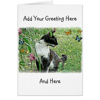 """Sissy"" Black & White Cat Card"