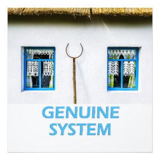 Sistema auténtico cojinete