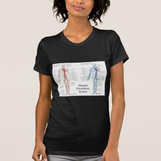 Sistema circulatorio humano de arterias y de venas t shirt